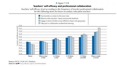 OECD 2013 TALIS Survey